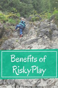 benefits of risky play